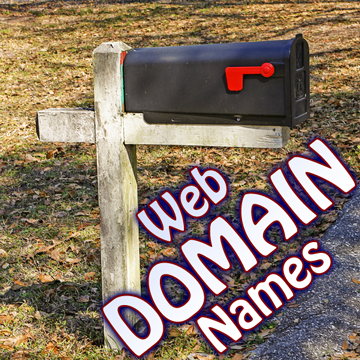 Website Domain Names